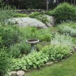 2.2_Perennial-birdbath