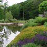 2.2_Perennial-pond-north