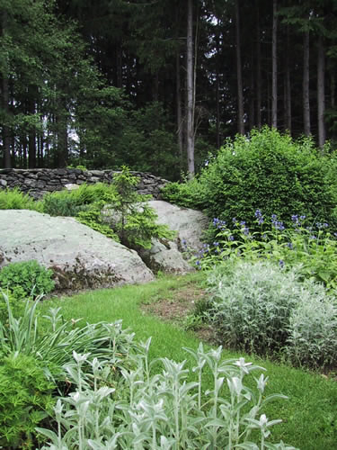 2.2_Perennial-rock-garden