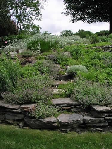 2.6_Stonework_rock-garden