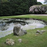 2.6_Stonework_stone-features