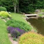 2.7_Water-Features-pond-bridge