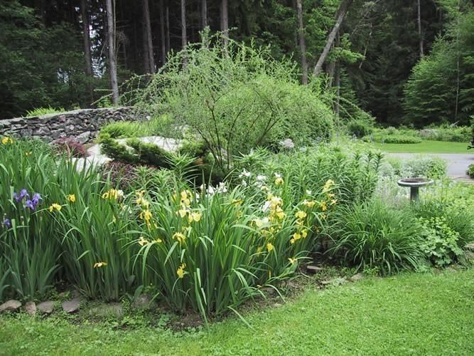 As native landscapers it is our task and responsibility to protect the natural environment.